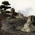 skały w ogrodzie japońskim(2)