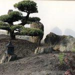 skały w ogrodzie japońskim(3)