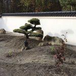 skały w ogrodzie japońskim(4)
