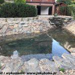 kamień ścieżkowy przy oczku wodnym(5)